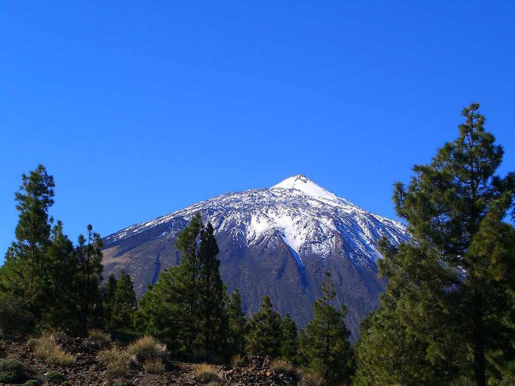 excursion al teide